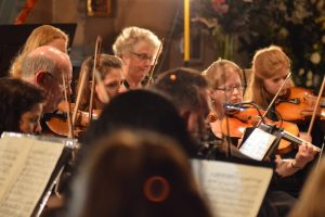 Violins close up_0988 800
